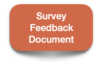 survey feedback doc